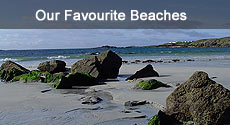Our Favourite Beaches